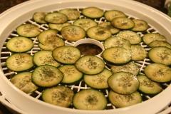 Cucumber chip hopefuls